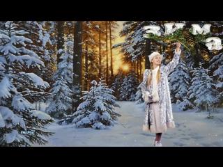 «Новогодние приключения у новогодней ёлки»